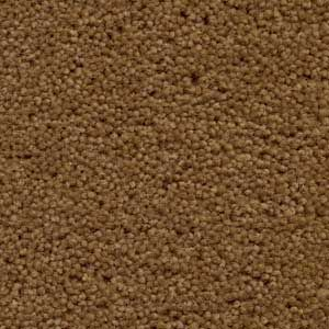 Crossley Wall To Wall Carpet Brokers